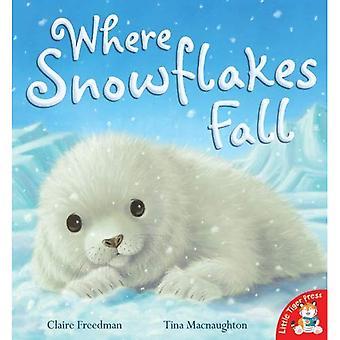 Où tombent les flocons de neige