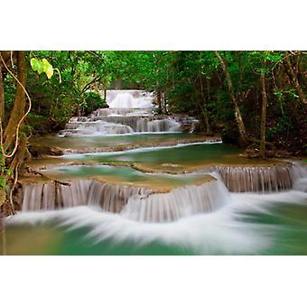 Wallpaper mural Forest Waterfall