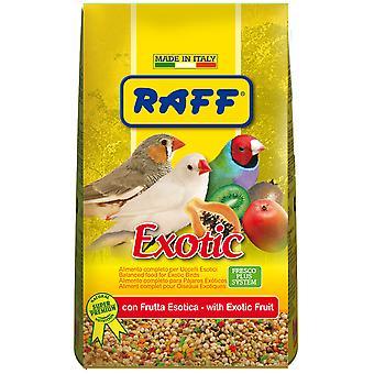Raff Exotic (Birds , Bird Food)