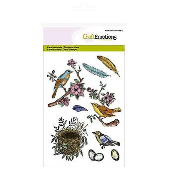 CraftEmotions Clear Stamps A6 - oiseaux, plumes, œufs