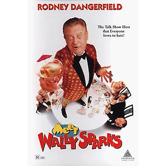 Meet Wally Sparks [DVD] USA import