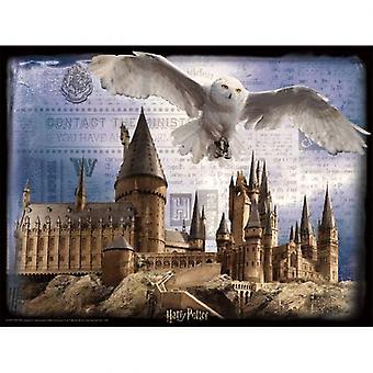 Harry Potter 3D Image Puzzle 500pc Hogwarts & Hedwig