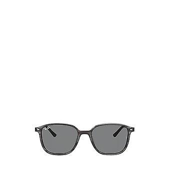 Ray-Ban RB2193 striped grey unisex sunglasses