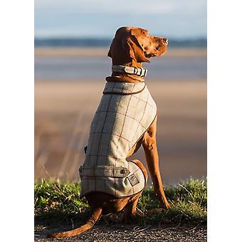Lyxiga lätta Tweed Dog Coats
