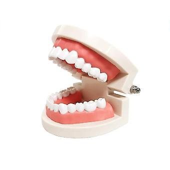 Standard Zahnmodell Kinder Zahnärztliche Lehrstudie Lieferungen Demonstration