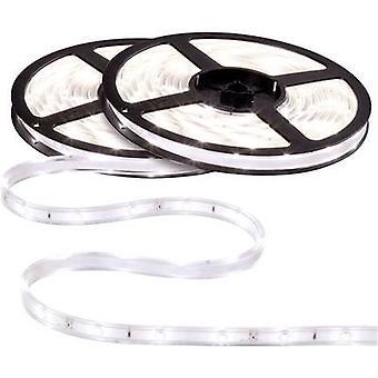 Paulmann WaterLED 70417 LED nauhat set + Kytke 12 V 750 cm neutraali valkoinen