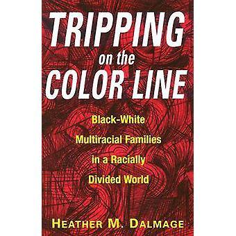 Snubler på Color Line BlackWhite multiracialt familier i en racistisk delt verden af Dalmage & Heather M