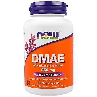 DMAE 250 mg (100 gorras vegetarianas) - Ahora Alimentos