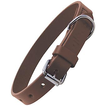 Gloria Pets Collar Piel Plano (Dogs , Collars, Leads and Harnesses , Collars)