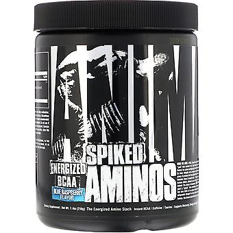 Universal Nutrition Animal Spiked Aminos - 30 portions - Framboise Bleue