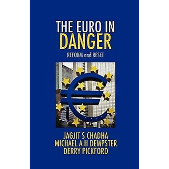 The Euro in Danger by Chadha & Jagjit S.