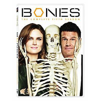 骨 - 骨: シーズン 5 [DVD] アメリカ インポートします。