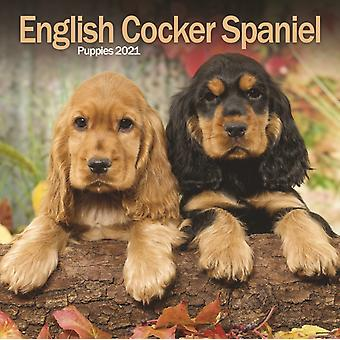 English Cocker Spaniel Puppies Mini Square Wall Calendar 2021