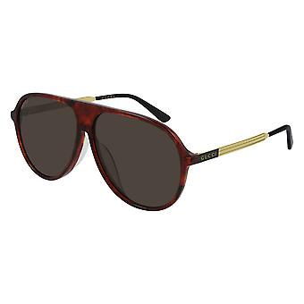 Gucci Asian Fit GG0829SA 003 Havana/Brown Sunglasses