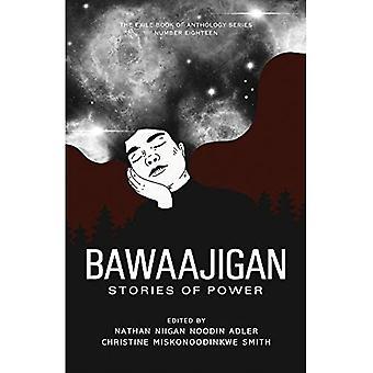 Bawaajigan: Histórias do Poder: O Livro do Exílio da Antologia Série: Número Dezoito (O Livro do Exílio da Antologia Série)