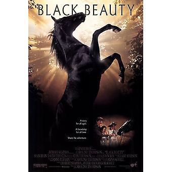Black Beauty Movie Poster (11 x 17)