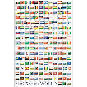 Flags Of The World 2011 Poster Poster Print