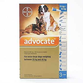 Advocate X Large Dogs Over 25Kg  3 Pack