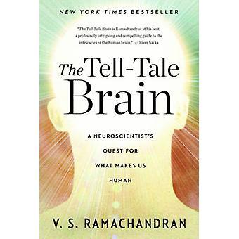 Kontrollampa hjärnan - en neurologs strävan efter vad gör oss till människor
