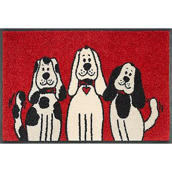 tvätt + torka tre hundar matta 40 x 60 cm hundar tvättbara smuts matta
