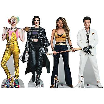 Birds of Prey Harley Quinn, Huntress, Black Canary & Black Mask Lifesize Cardboard Cutout / Standee Set of 4