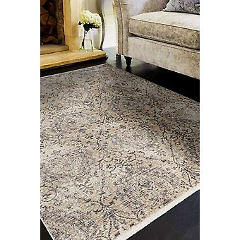 4'x6' Sand Grey Machine Woven Distressed Vintage Traditional Indoor Area Rug
