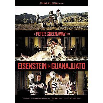 Eisenstein in Guanajuato [DVD] USA import