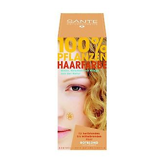 Vegetable Powder Dye Reddish Blonde 100 g