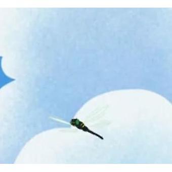 Jääkiekkokypärävisiiri Naarmuuntumisenesturaaminen Poikkeuksellinen