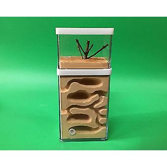 Plaster Ant Farm Natural Ecological Big Ant Nest Insect Castle Workshop Pet Anthill Ant House