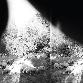 Godspeed You! Black Emperor - Asunder Sweet and Other Distress [CD] USA import