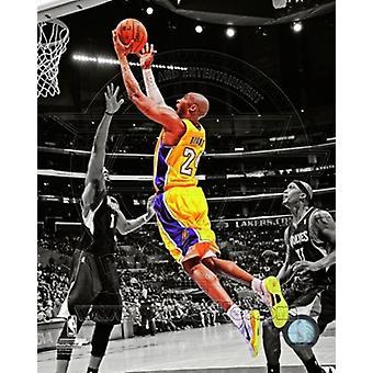 Kobe Bryant 2012-13 Spotlight Action Sports Photo (8 x 10)