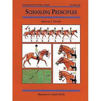 Schooling Principles by Michael Stevens