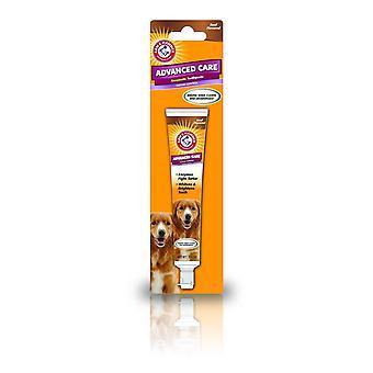 Braț & amp; Ciocan tartar control Dog carne de vită pastă de dinți