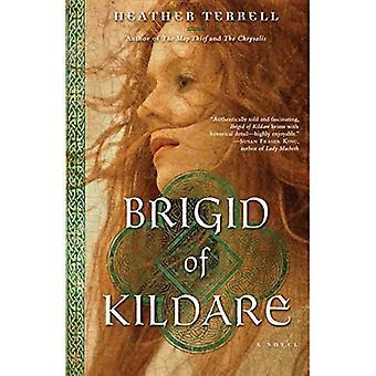 Brigid van Kildare
