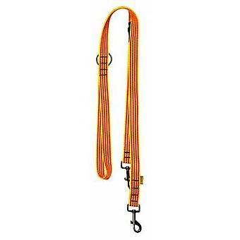 Cats Dog Leash Catalunya Dog Training (Dogs , Collars, Leads and Harnesses , Leads)