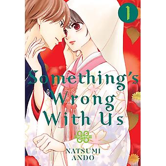 Somethings Wrong With Us 1 by Natsumi Ando