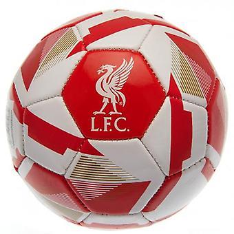 Liverpool Skill Ball RX