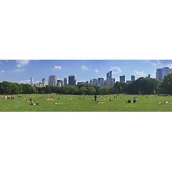 Tourists resting in a park Sheep Meadow Central Park Manhattan New York City New York State USA Poster Print
