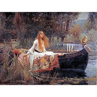John William Waterhouse - The Lady van Shalott licht Poster Print Giclee