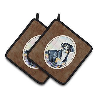 Carolines Treasures  7030PTHD Entlebucher Mountain Dog Pair of Pot Holders