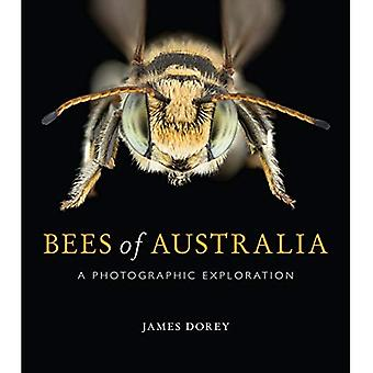 Bees of Australia: A Photographic Guide
