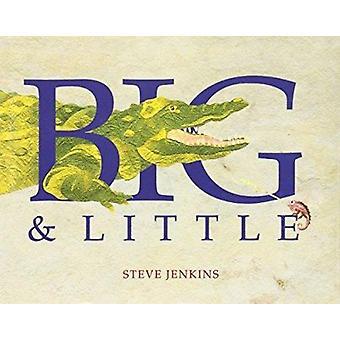 Big and Little by Steve Jenkins - Steve Jenkins - 9780395726648 Book