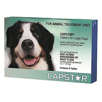 Capstar Large Dogs 11.1-57kg (26-125lbs) Compresse - 6 Pack