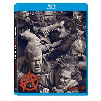 Sons of Anarchy: Season 6 [BLU-RAY] USA import