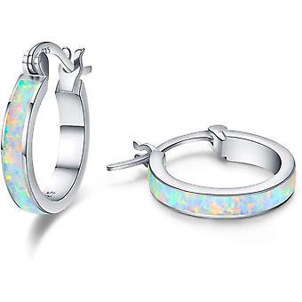 Sterling Silver Huggie Earrings, 925 Sterling Silver Earrings for Girls Kids