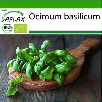 Saflax - 800 graines - Avec du sol - Bio - Basil Genovese - BIO - Basilic - Génois - BIO - Basilico - Dolce Genovese - Ecológico - Albahaca - Dulce Genovesa - BIO - Basilikum Sweet Genovese