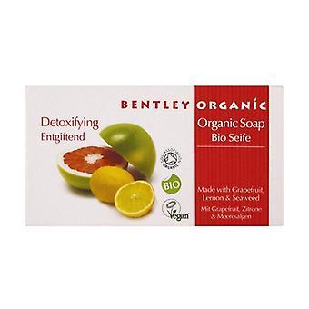 Solid Detoxifying Soap 150 g (Citrus)