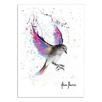 Art-Poster - September Sunset bird - Ashvin Harrison