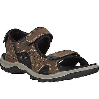 Ecco Mens Offroad Lite Leather Walking Hiking Outdoors Trail Sandals - Dark Clay